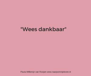 Wees dankbaar www.naarjezininjeleven.nl